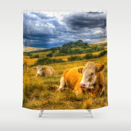 Resting Cows Shower Curtain