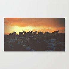 Golden Red Horses Canvas Print