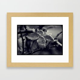 Winter's tale 3 Framed Art Print