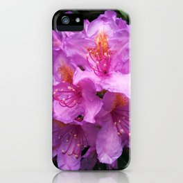 Spring Blooms iPhone Case