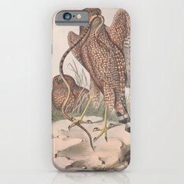 Jardine's Harrier, circus jardinii3 iPhone Case