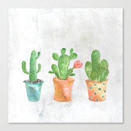Three Green Cacti Watercolor White Canvas Print
