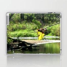 Peaceful Waters Laptop & iPad Skin