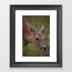 A Doe Eyed Lady Framed Art Print
