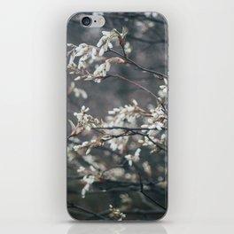 Wild Cherry Blossom iPhone Skin