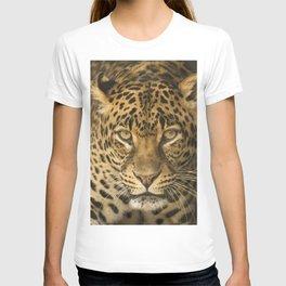 Dangerous leopard T-shirt