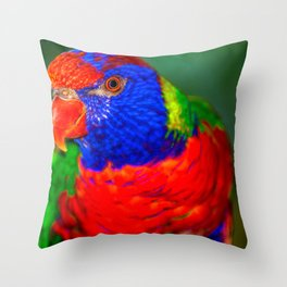 Loris ( Honigpapagei ) Throw Pillow