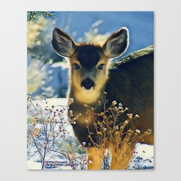 Blue Baby Deer in Winter Light by CheyAnne Sexton Canvas Print