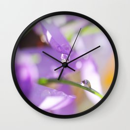 Natural raindrops slide in the spring Garden Wall Clock