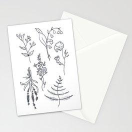 Lavender, Ferns, & Wildflowers Illustration Stationery Cards