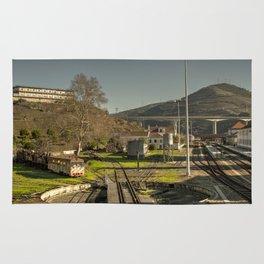Regua depot Rug