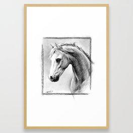 Horse 1 Framed Art Print