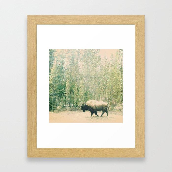 bison I Framed Art Print