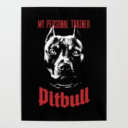 Pitbull My Personal Trainer Poster