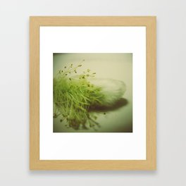 Pussy Willow Framed Art Print