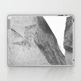 Iceberg Laptop & iPad Skin