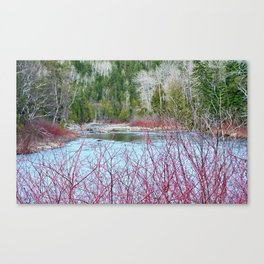 River of Trees Canvas Print