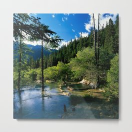 Mountain Forest Lake Metal Print