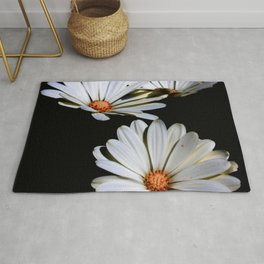 White African Daisies Isolated on Black Rug