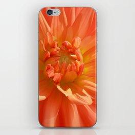 dahlia macro 112 iPhone Skin