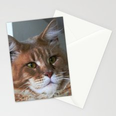 Orange cat with yellow eyes Stationery Cards