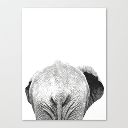 Black and white elephant animal jungle Canvas Print