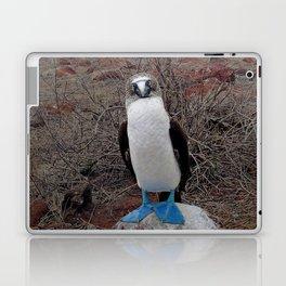 blue is cool Laptop & iPad Skin