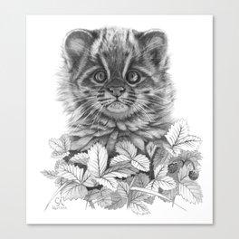 Asian Leopard Cat Cub G096 Canvas Print