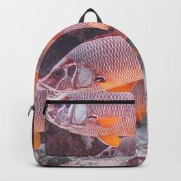 Red Snapper Backpack