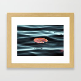 Lily Pad Framed Art Print
