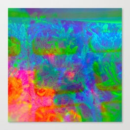 Our Psychedelic Nature Canvas Print