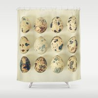 eggs Shower Curtains featuring Quail Eggs by Cassia Beck