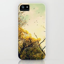 Beautiful morning iPhone Case