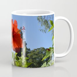 Flower at Kolossi (Limassol, Cyprus) Coffee Mug