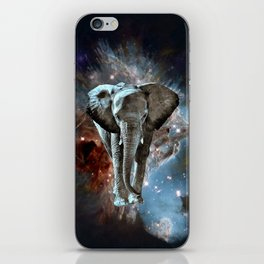 Where do Elephants Come From? iPhone Skin
