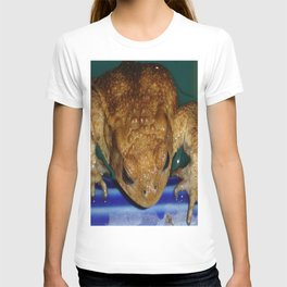 Bufo Bufo Clinging To The Edge Of A Swimming Pool T-shirt