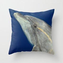Bottlenose dolphin portrait Throw Pillow