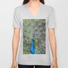 The peacock portrait Unisex V-Neck