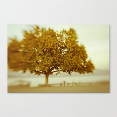 Dreamy Yellow Canvas Print