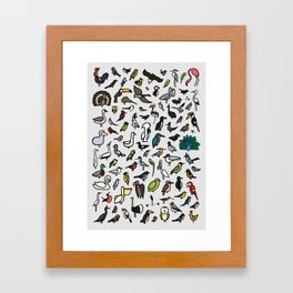 100 Birds Poster Framed Art Print