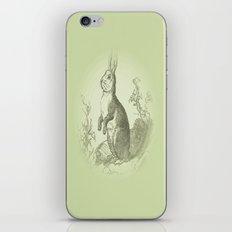 Bunny Rabbit {soft sage green} iPhone & iPod Skin
