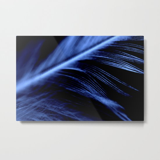Blue Feather close up Metal Print