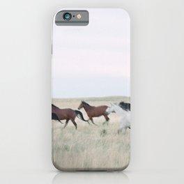 Colorado horse dreams iPhone Case