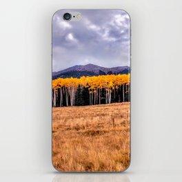 Aspens North of Flagstaff Arizona - Humphreys Peak iPhone Skin