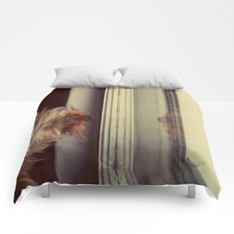 Yorkie Daydreaming Comforters