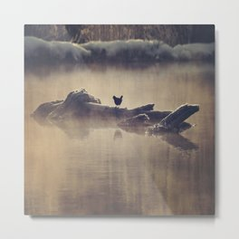 Amidst The Mist Metal Print