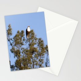 African Fish Eagles Perching on Tree Stationery Cards