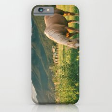 Pretty Horse Eating Grass in the Montana Sunset Slim Case iPhone 6s