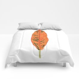 Falling for Petra Comforters
