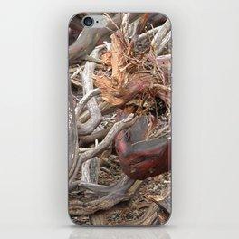 TEXTURES - Manzanita Drought Conditions #4 iPhone Skin